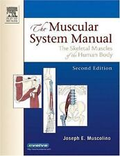 The Muscular System Manual : The Skeletal Muscles of the Human Body by Joseph E.