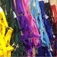 "Horse Halter 1"" Coloured Nylon~In Sizes Foal  &  Pony Cob & Full"