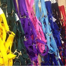 "Horse Halter 1"" Coloured Nylon~In Sizes Foal  &  Pony Cob & Full"