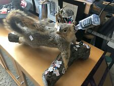 MAN CAVE GAMBLING DRUNK ODDITY Poker Playing Taxidermy Squirrel Chips Cards Cash