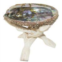Abalone Shell Wood Tripod Stand Smudge Kit Sage Smudging Resin Charcoal Burner