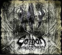 Say Hello to Tragedy-Ltd.(Digipack) von Caliban | CD | Zustand gut