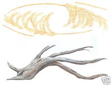 Sea Oats & Driftwood Creative Art Transfer Art Decal Wall Decor Tatouage
