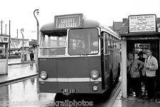 Red & White U1651 JWO231 Leyland Bus Photo Ref P620