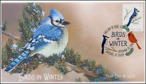18-258, 2018, Birds in Winter, DCP Postmark, Blue Jay, FDC
