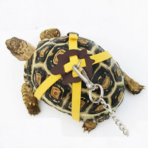 Leather Harness Strap Pet Tortoise Turtle Chest Collar Walking Lead Control Rope