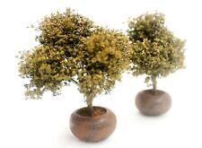 DIORAMA ACCESSORIES 1/35 SCALE TREE POT MODEL SET. 2 PCS./1 SET.  TND-084
