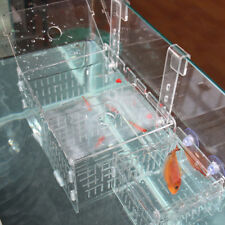 Injured Fish / Sea Clownfish / Aggressive Fish Isolation Box Breeding Case