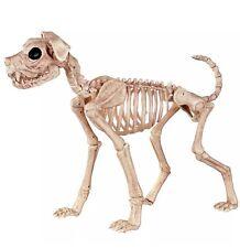 LIFESIZE REALISTIC SHADOW THE SKELETON DOG HALLOWEEN PROP CRAZY BONEZ DECORATION