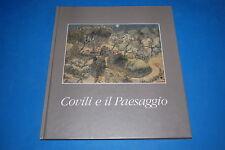 COVILI E IL PAESAGGIO - Vico Faggi, Comune di Spilamberto 1990