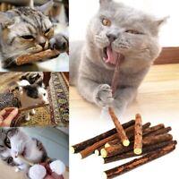 5pcs Natural Mutian Pet Snack Cat Chew Stick Treat Toy Catnip Molar Food Ca A3C7