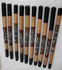 """47"""" Digeridoo Dot Painted GECKO Aboriginal Handwork Art +Bag+ Beeswax Mouthpiece"""