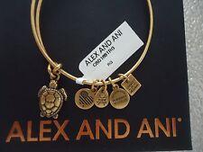 Alex and Ani SEA TURTLE Rafaelian Gold Finish Bangle New W/Tag Card & Box