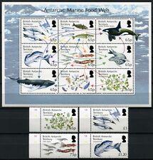 BRIT ANTARKTIS BAT ANTARCTIC 2014 Nahrungskette Krill Wale Fische Seals Plankton