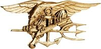 Naval Special Warfare Lapel Pin Gold US Navy Seals USN Trident Military Insignia