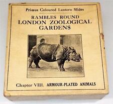 Rambles Round London Zoological Gardens - Chapter 8 - Magic Lantern Slides c1900