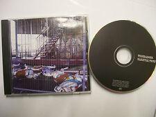 TROUBADOUR Carnival Town – 2007 UK CD – Folk Rock - Blackpool duo – V RARE!
