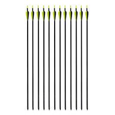 12pcs Archery Bow Arrows Hunting Target Practice Fiberglass Fletched Arrow Nocks