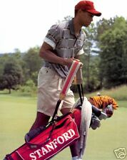 Tiger Woods Stanford College,  8x10  Color Photo
