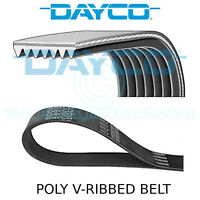 Dayco Poly V Belt - Auxiliary, Fan, Drive, Multi-Ribbed Belt - 7 Ribs - 7PK1730