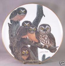 "Crown Parlan - Artist John A. Ruthvin - "" Saw Whet Owl """