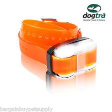 Dogtra EDGE 1 Mi EXTRA REPLACEMENT Add-a-Dog COLLAR RECEIVER Orange EDGE-RX-ORG