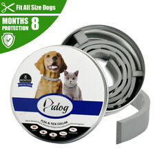 New listing Flea and Tick Collar for Dog Cat Adjustable Insect Repel Killer Prevent 8 Months