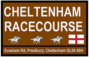 Cheval de Course - 'Road' Signes (Cheltenham) - Souvenir Nouveauté Frigo Aimant