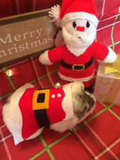 Christmas Guinea pig costume- Santa Claus . Festive small pet costume