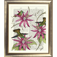 ART PRINT ON ORIGINAL ANTIQUE DICTIONARY BOOK PAGE Vintage Flower Bird Pink Wall