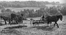 Trébol de semillas ser cosechadas Kent 1946 Vintage historial de cultivo de impresión montado