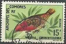Timbre Oiseaux Comores 43 o lot 13109
