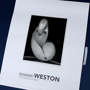 EDWARD WESTON 2007 PHOTO LITHOGRAPH POSTER PHOTOGRAPHY MASTERPIECE