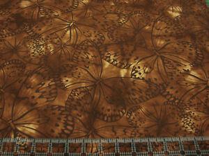 3 Yards Cotton Fabric - Benartex Everyday Prints Blenders Dark Brown Butterflies