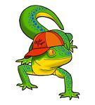 Gecko Paper Ltd