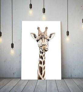 GIRAFFE HEAD - DEEP FRAMED CANVAS WALL ART PICTURE PRINT- ANIMAL SAFARI