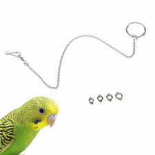Pet Bird Parrot Foot Chain Stainless Steel Ankle Foot Ring Stand Swing Fun Toy