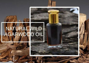 Pray4mohammad 50 Ml Natural Indonesian Wild Agarwood Oil Long Lasting #98