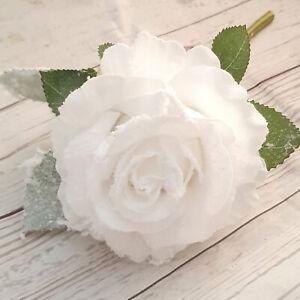 Roses & Poinsettias