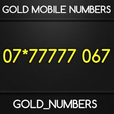 GOLD MEMORABLE EASY VIP BUSINESS MOBILE NUMBER 07*77777067