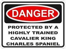 Chien cavalier king charles spaniel danger autocollant animal pour pare-chocs locker voiture