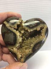 Dragon Stone,Septarian  Nodule Hollow Heart ( Utah )