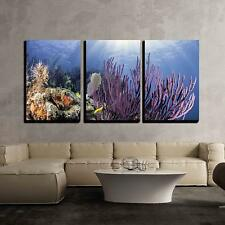 """Wall26 - Coral Reefs of North America - Canvas Art Wall Decor - 24""""x36""""x3 Panels"""