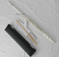 5%OFF Professional Silver Flute 17 Open Holes B Foot French Point Key with Case