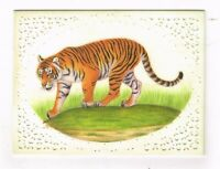 Hand Painted Fine Miniature Art Of Tiger Painting Finest Ethnic Nature Wildlife