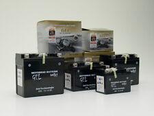 Kawasaki W650 ZRX1100 ZRX1200 Intact Bike Power Batterie GEL YTX14-BS (299-214)