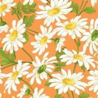 Fresh as a Daisy - Orange Daisy by Maywood Studios
