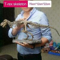 T Rex Tyrannosaurus Rex Skeleton Dinosaur Animal Collector Decor Model Toy X1U4