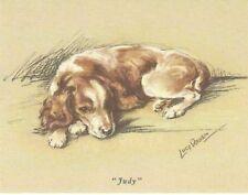 Welsh Springer Spaniel Puppy - Matted Dog Print - Lucy Dawson