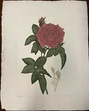 Rose with Buds by Victor Hohne - Etching on Hoomemade Paper
